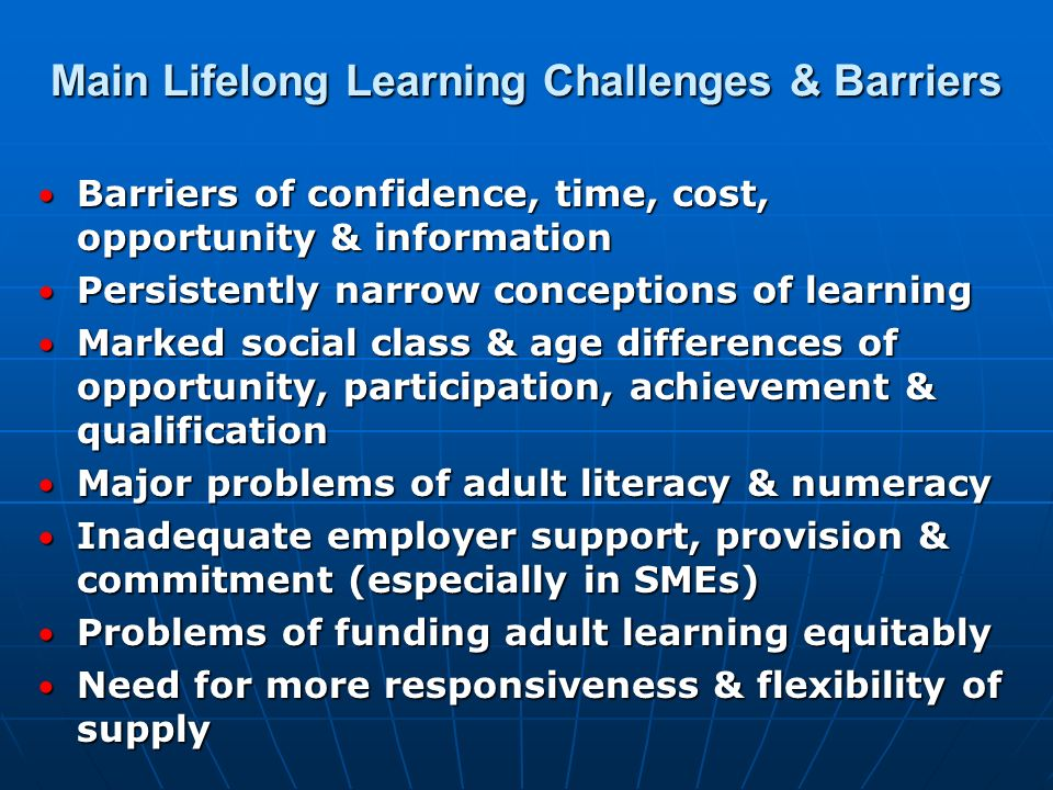Main Lifelong Learning Challenges & Barriers
