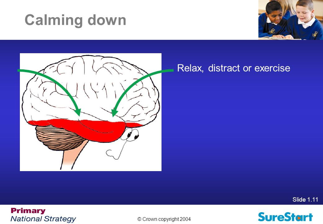 Calming down Relax, distract or exercise Slide 1.11