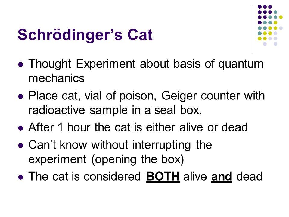 Schrödinger's Cat Thought Experiment about basis of quantum mechanics