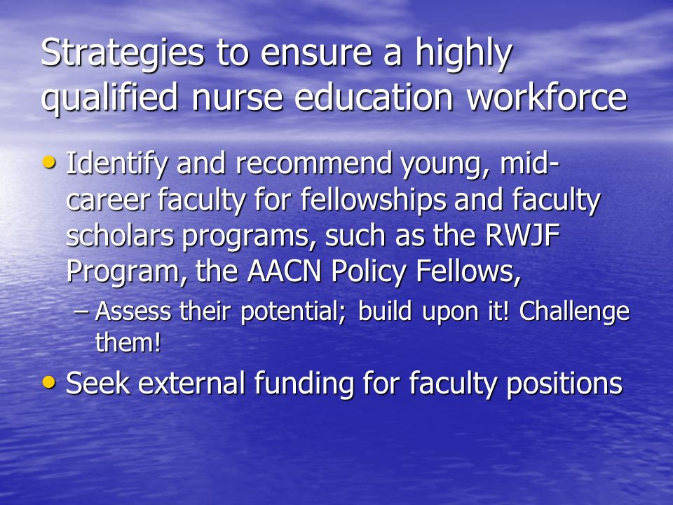 Strategies to ensure a highly qualified nurse education workforce