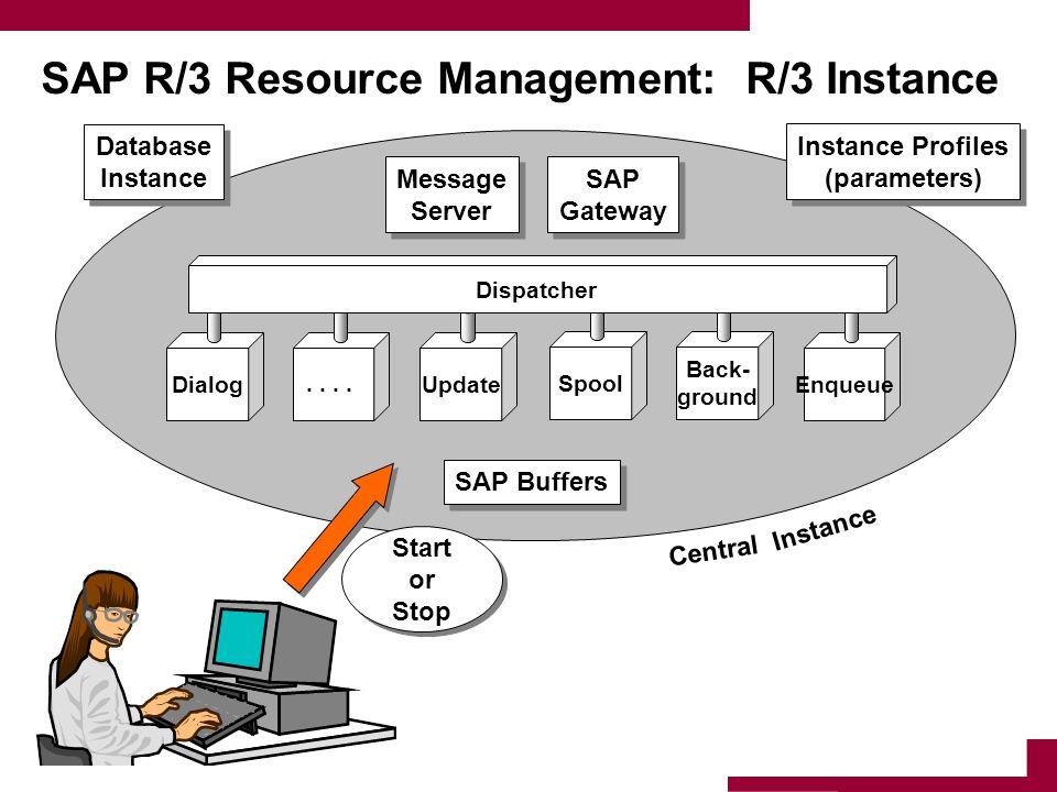 SAP R/3 Resource Management: R/3 Instance