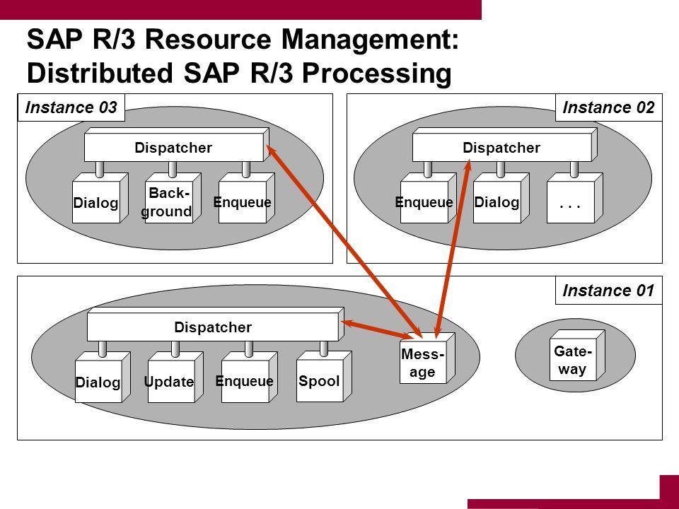 SAP R/3 Resource Management: Distributed SAP R/3 Processing