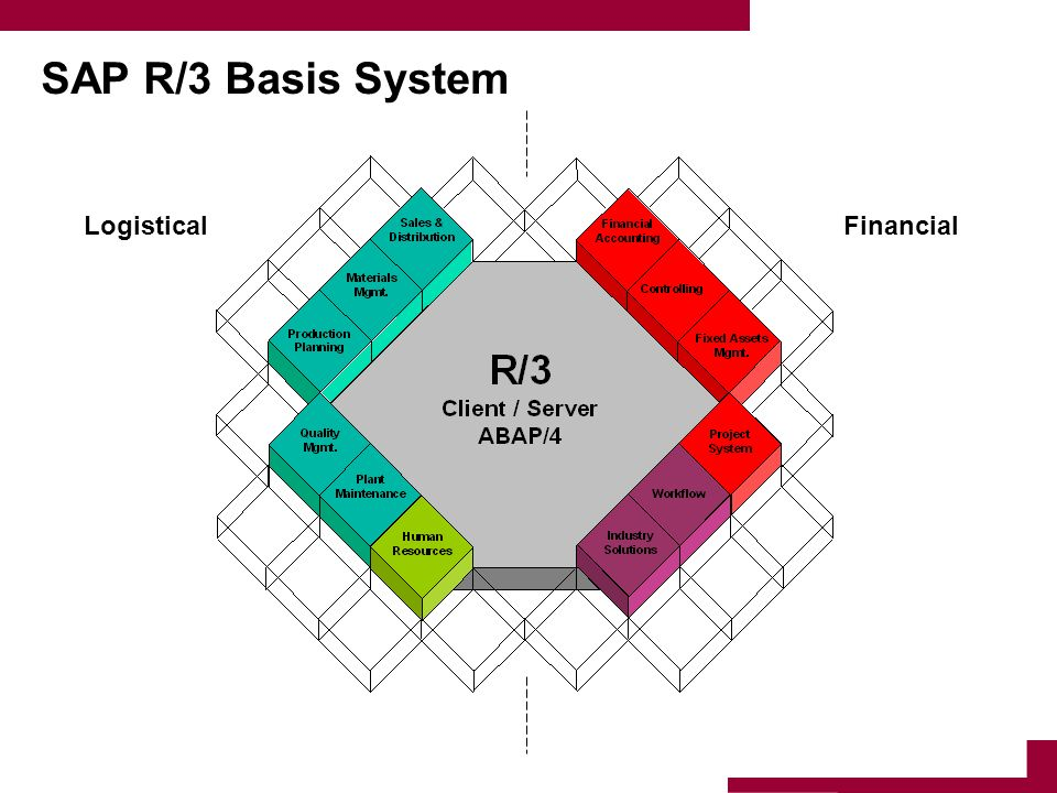 SAP R/3 Basis System Logistical Financial