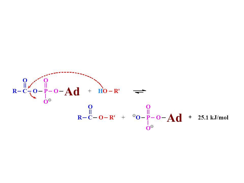 R C O Ad P + 25.1 kJ/mol H R