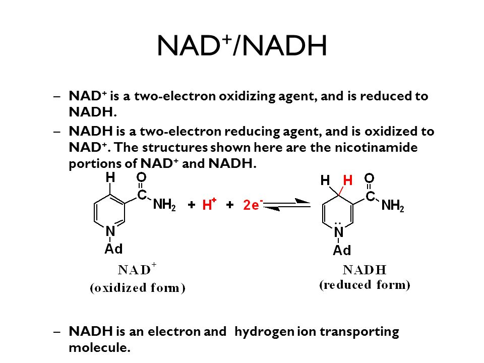 NAD+/NADH NAD+ is a two-electron oxidizing agent, and is reduced to NADH.
