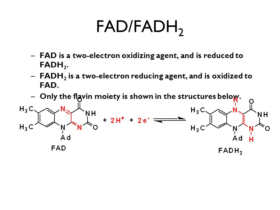 FAD/FADH2 FAD is a two-electron oxidizing agent, and is reduced to FADH2. FADH2 is a two-electron reducing agent, and is oxidized to FAD.