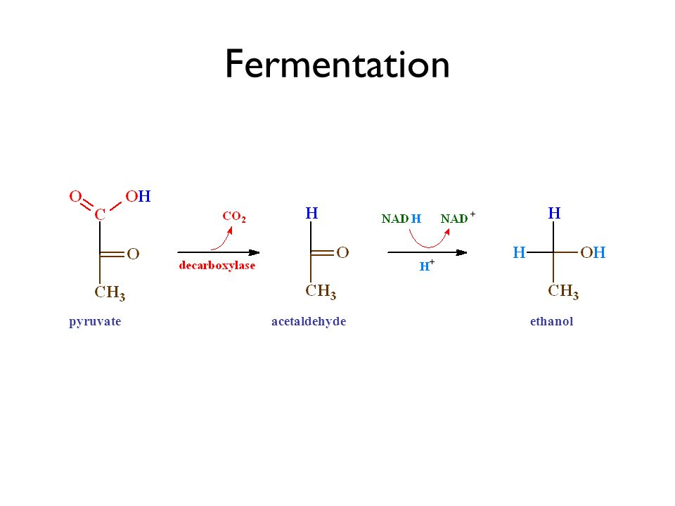 Fermentation pyruvate pyruvic acid acetaldehyde acetaldehyde ethanol