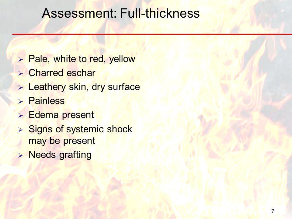 Assessment: Full-thickness