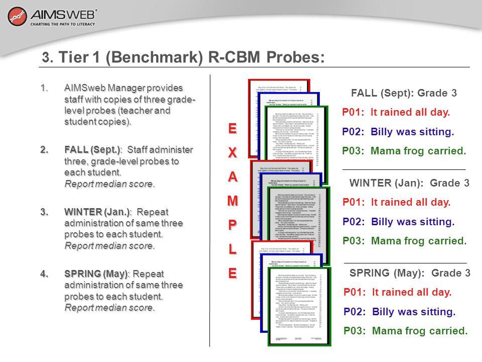 3. Tier 1 (Benchmark) R-CBM Probes:
