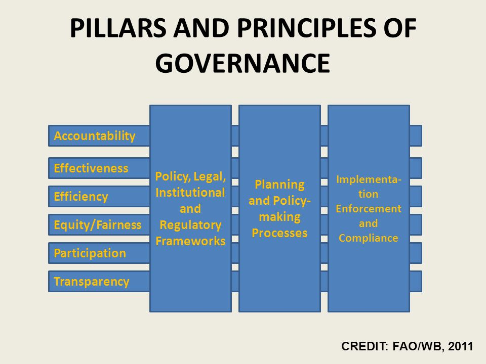 PILLARS AND PRINCIPLES OF GOVERNANCE