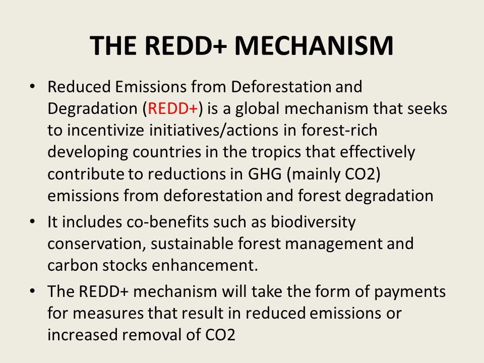 THE REDD+ MECHANISM