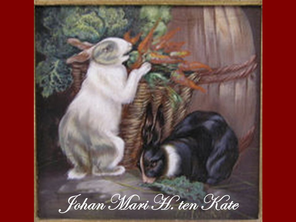 Johan Mari H. ten Kate