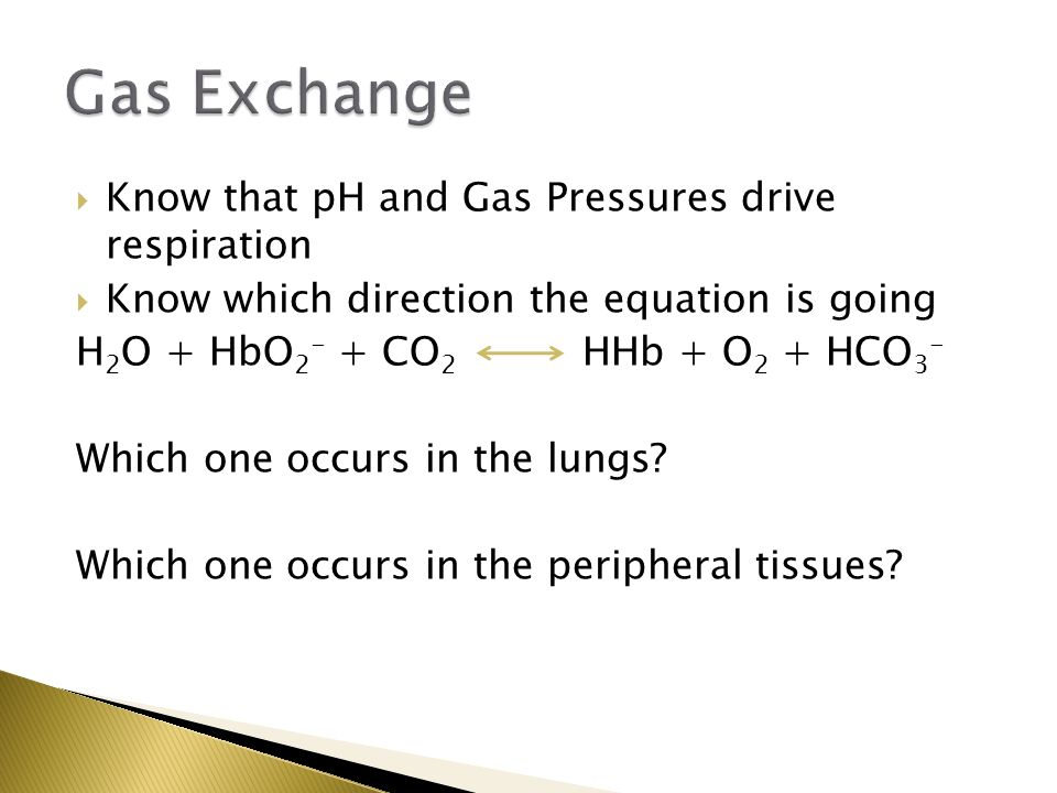 Gas Exchange Know that pH and Gas Pressures drive respiration