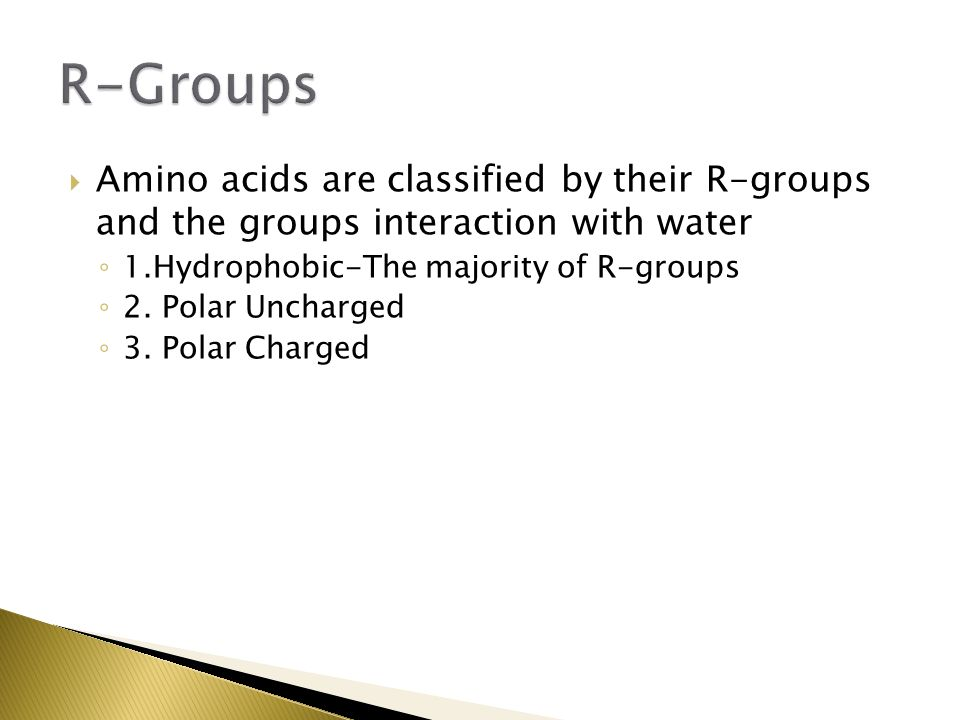 R-Groups Amino acids are classified by their R-groups and the groups interaction with water. 1.Hydrophobic-The majority of R-groups.