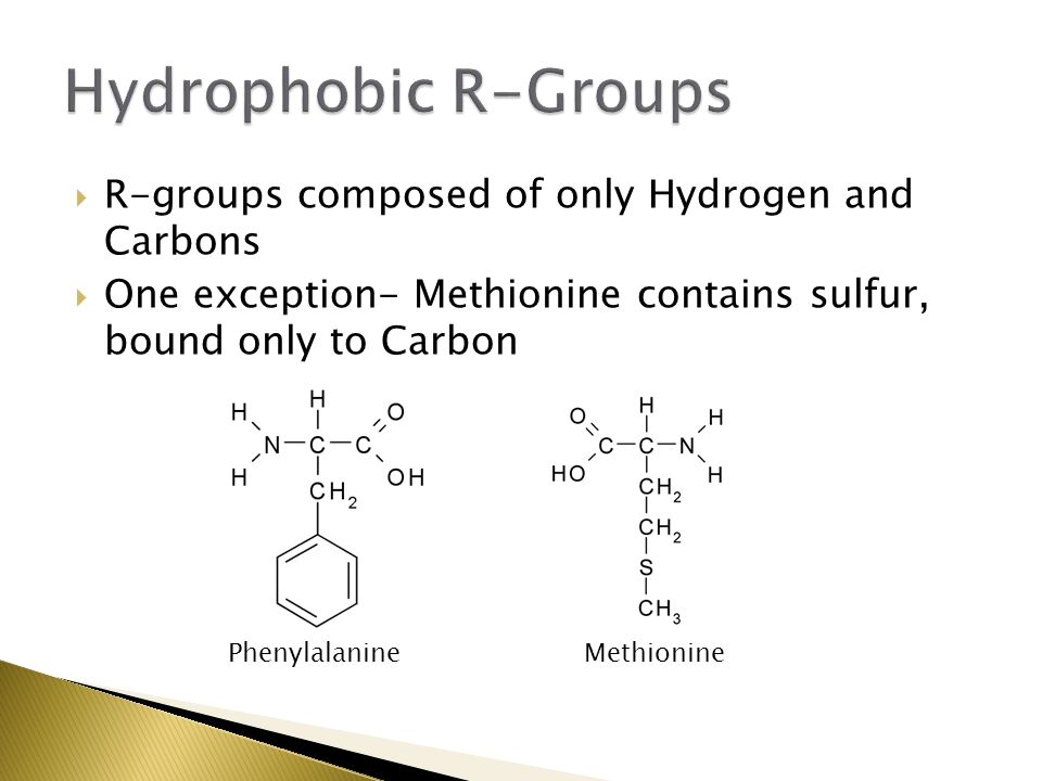 Hydrophobic R-Groups R-groups composed of only Hydrogen and Carbons
