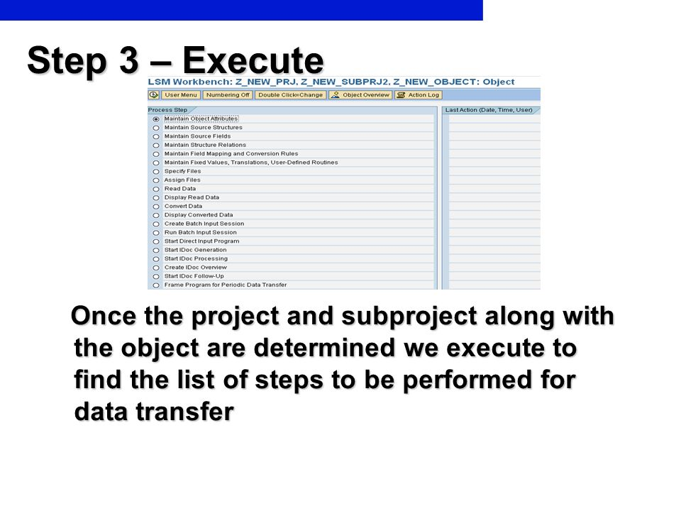 Step 3 – Execute