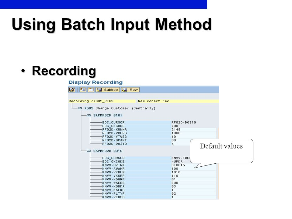 Using Batch Input Method
