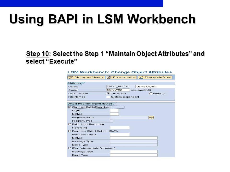 Using BAPI in LSM Workbench