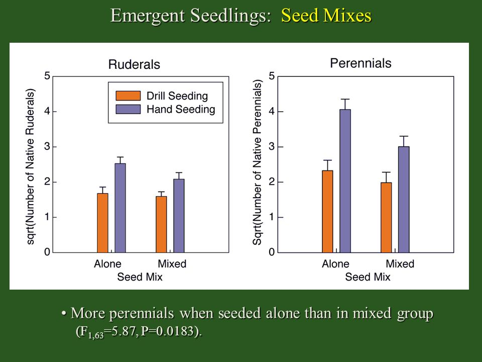 Emergent Seedlings: Seed Mixes