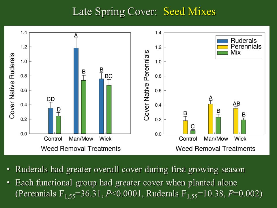 Late Spring Cover: Seed Mixes