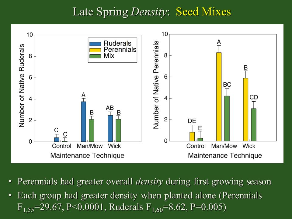 Late Spring Density: Seed Mixes