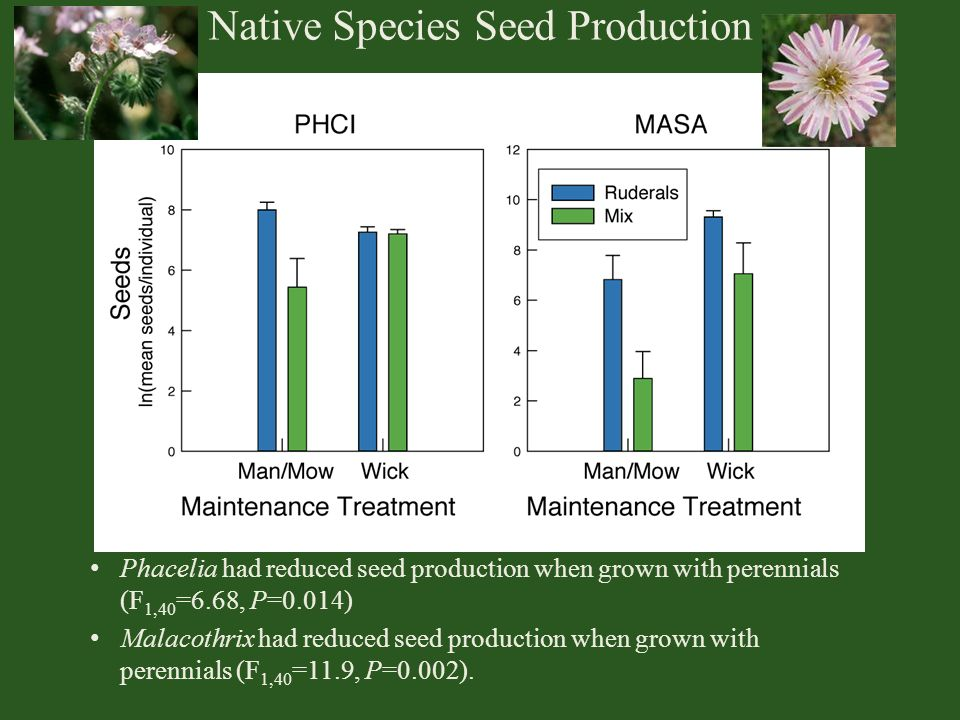 Native Species Seed Production