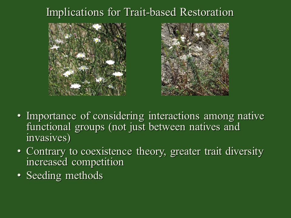 Implications for Trait-based Restoration
