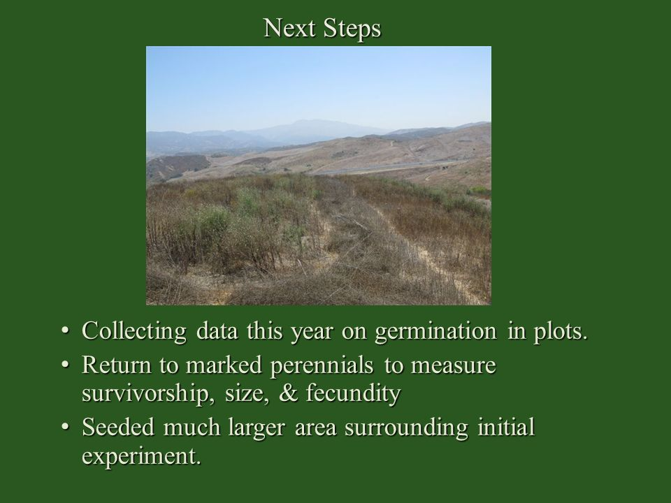 Next Steps Collecting data this year on germination in plots.