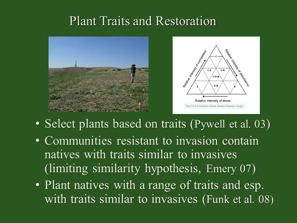Plant Traits and Restoration