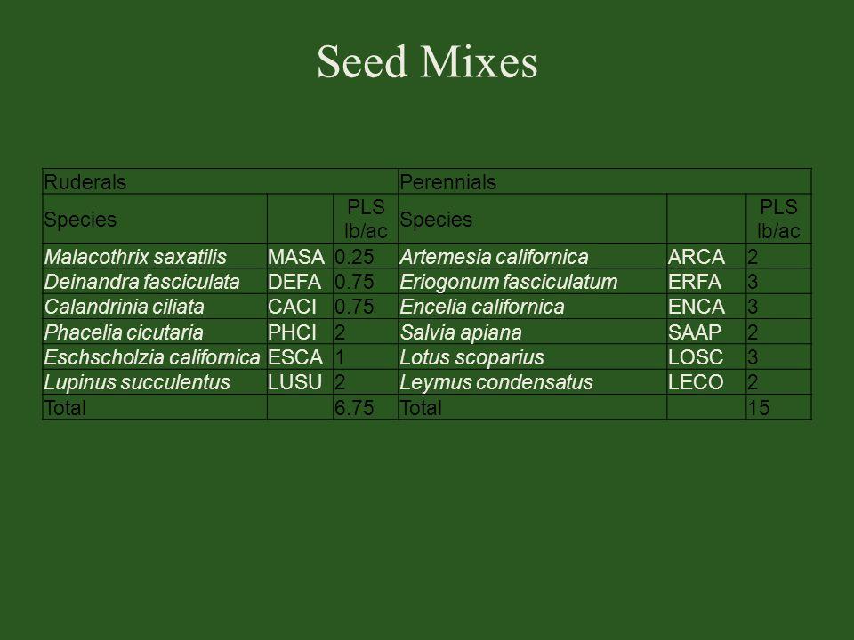 Seed Mixes Ruderals Perennials Species PLS lb/ac Malacothrix saxatilis