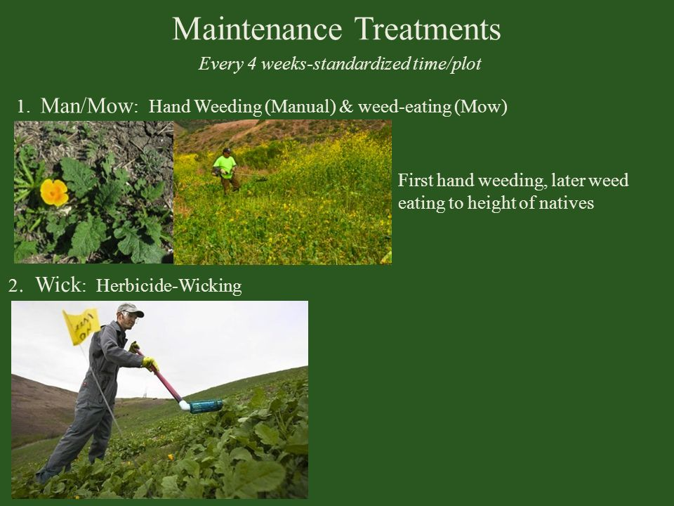 Maintenance Treatments Every 4 weeks-standardized time/plot