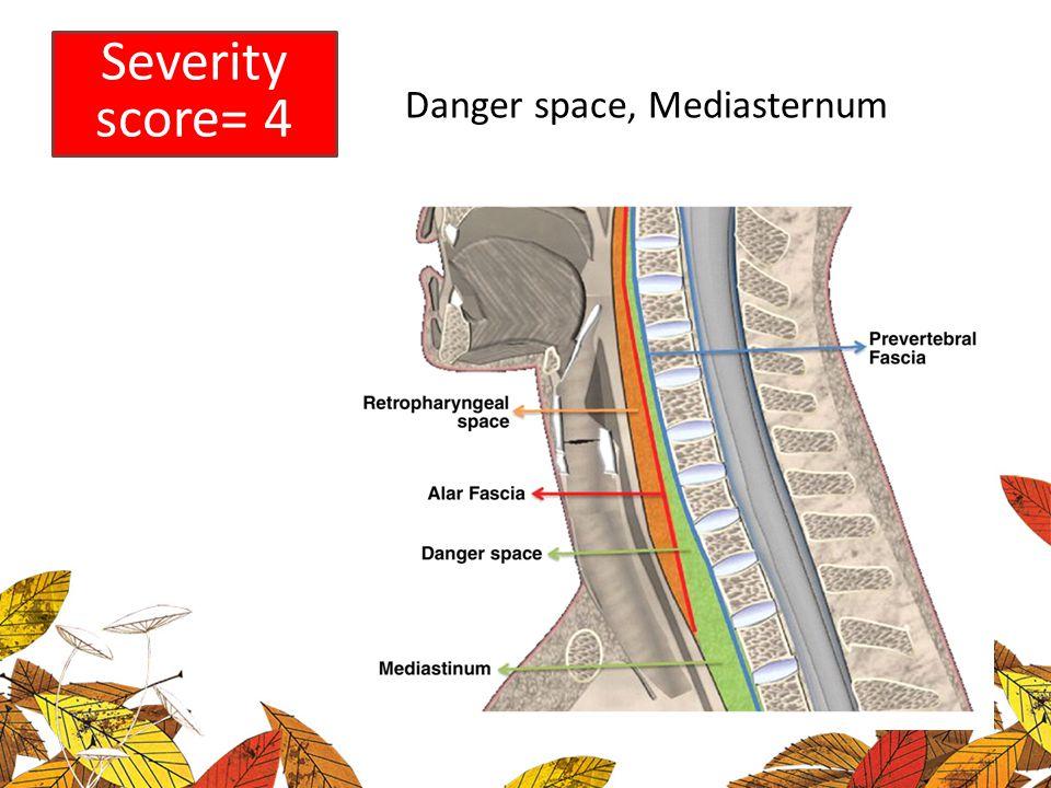 Severity score= 4 Danger space, Mediasternum