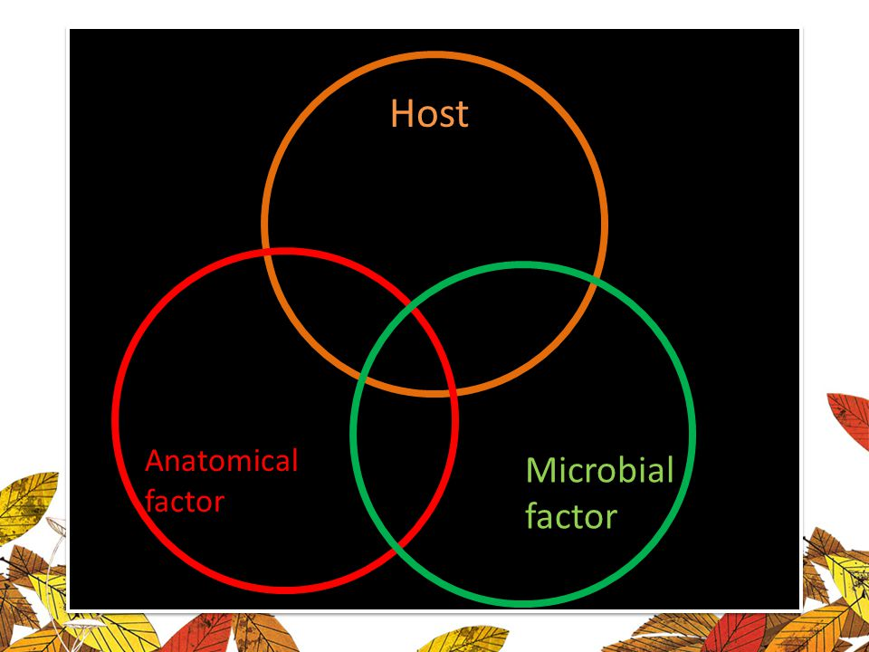 Host Anatomical factor Microbial