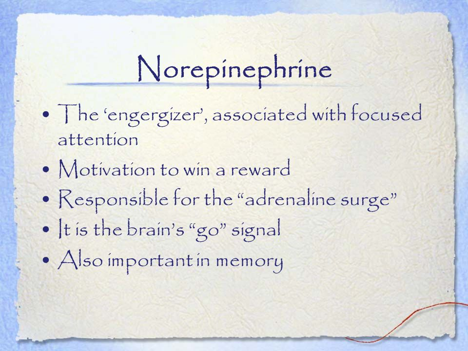 Norepinephrine The 'engergizer', associated with focused attention