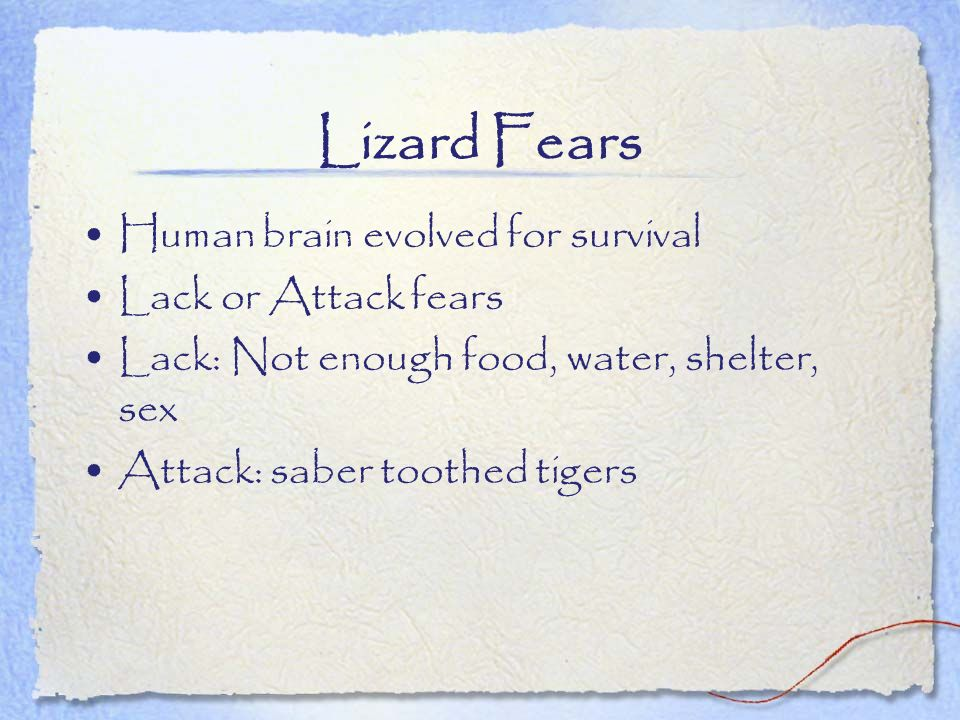 Lizard Fears Human brain evolved for survival Lack or Attack fears