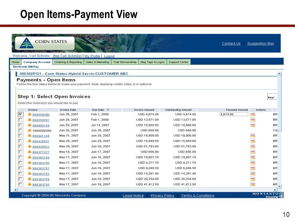 Open Items-Payment View
