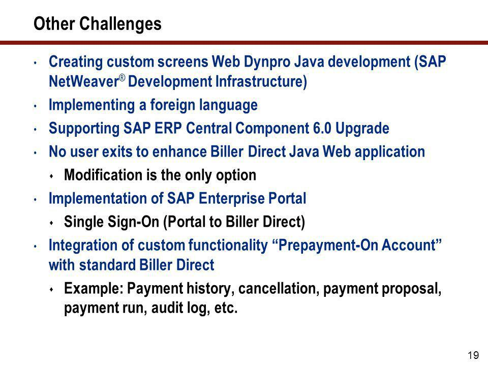 Other Challenges Creating custom screens Web Dynpro Java development (SAP NetWeaver® Development Infrastructure)