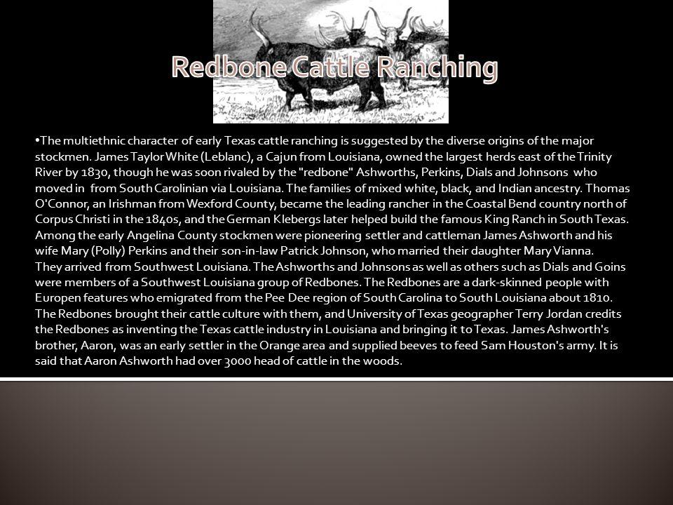 Redbone Cattle Ranching