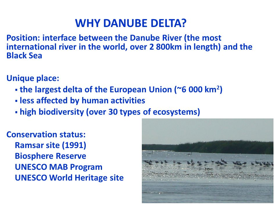WHY DANUBE DELTA