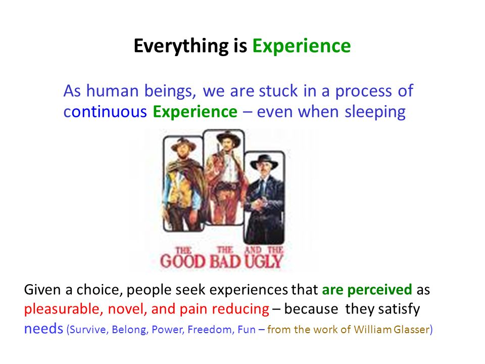 Everything is Experience