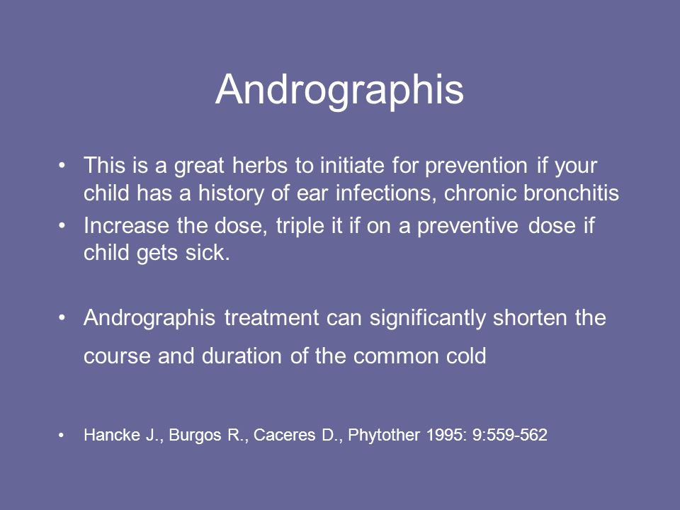Andrographis This is a great herbs to initiate for prevention if your child has a history of ear infections, chronic bronchitis.