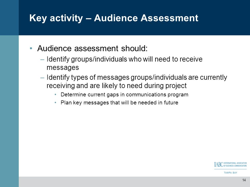 Key activity – Audience Assessment