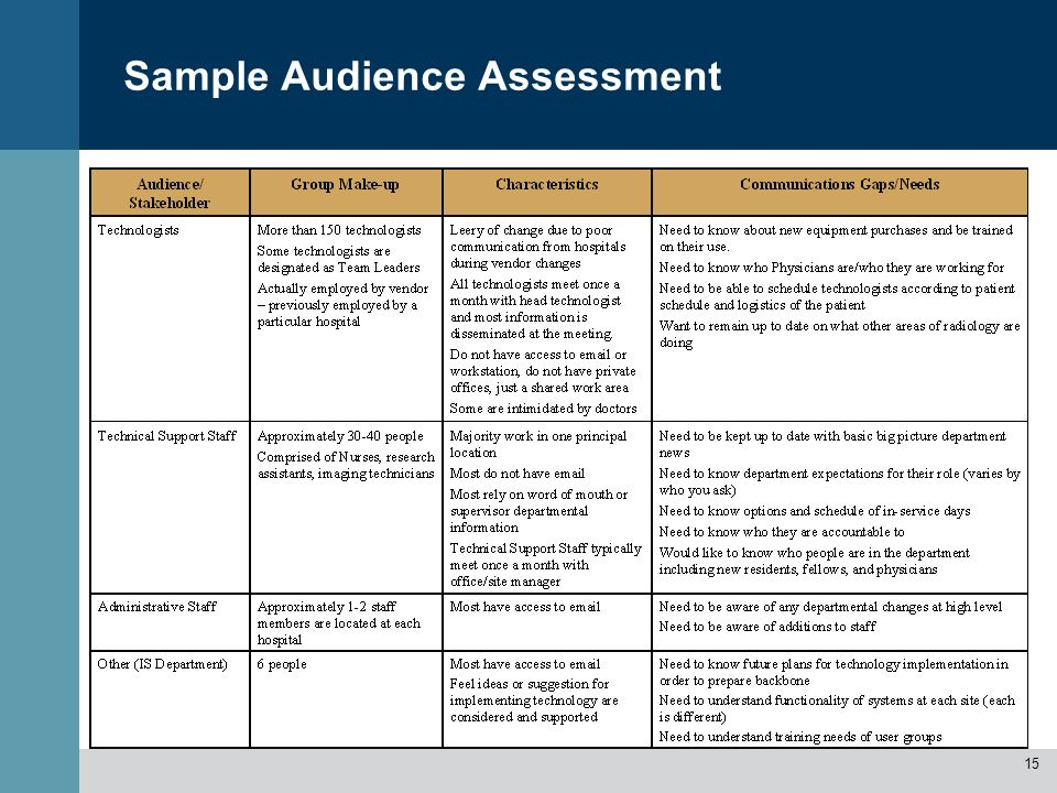Sample Audience Assessment