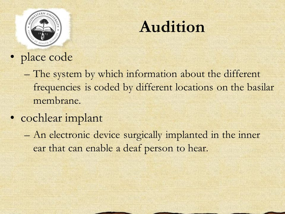 Audition place code cochlear implant