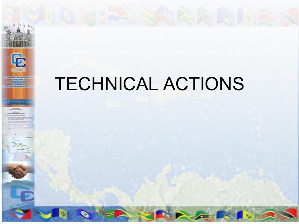 TECHNICAL ACTIONS