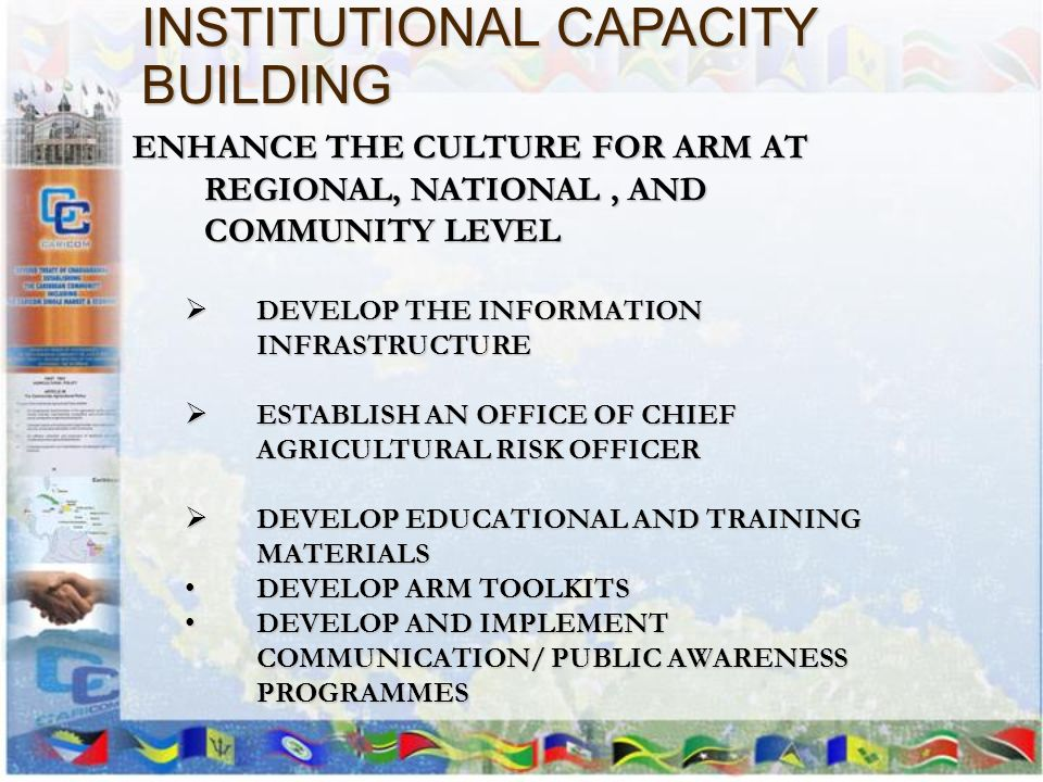 INSTITUTIONAL CAPACITY BUILDING