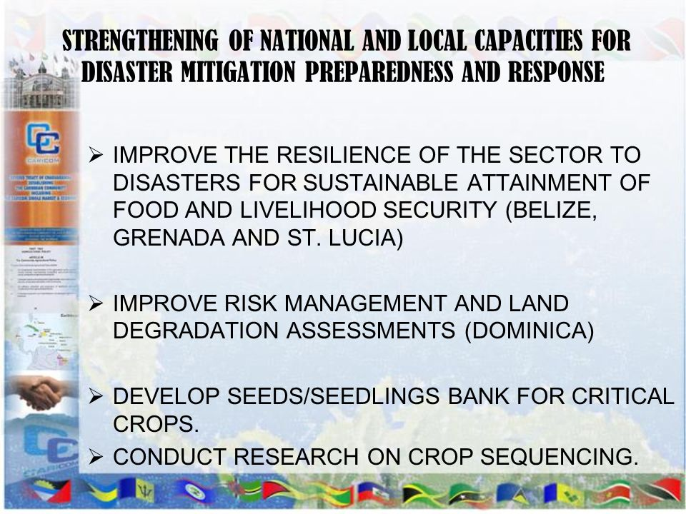 STRENGTHENING OF NATIONAL AND LOCAL CAPACITIES FOR DISASTER MITIGATION PREPAREDNESS AND RESPONSE