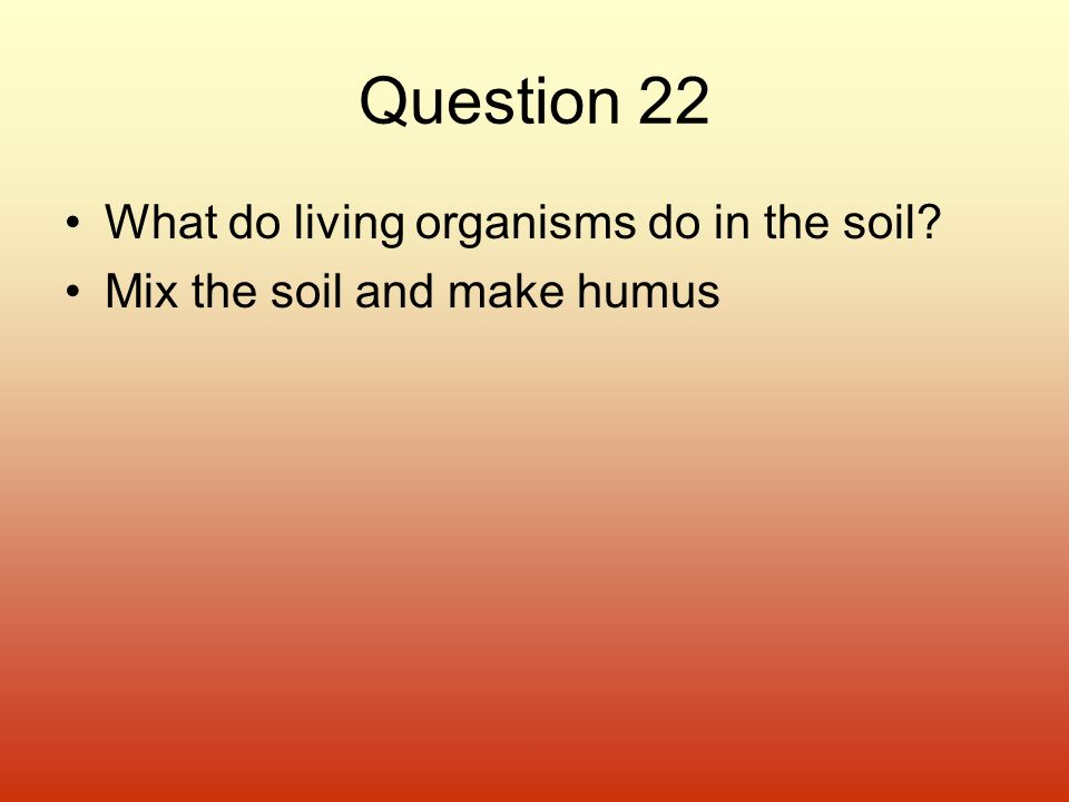 Question 22 What do living organisms do in the soil