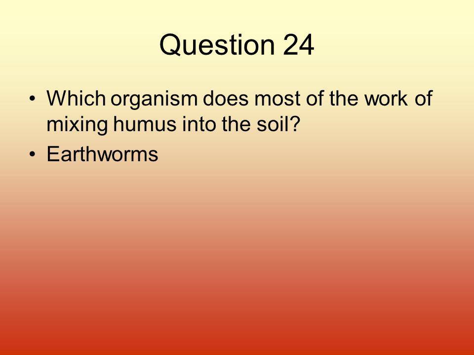 Question 24 Which organism does most of the work of mixing humus into the soil Earthworms