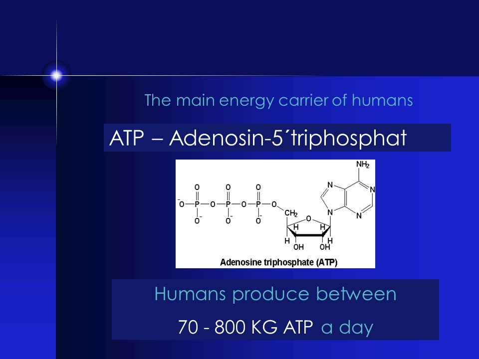 Humans produce between